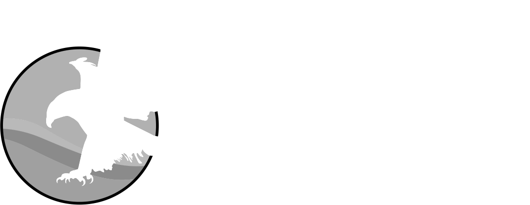 Lusaka International Film Festival